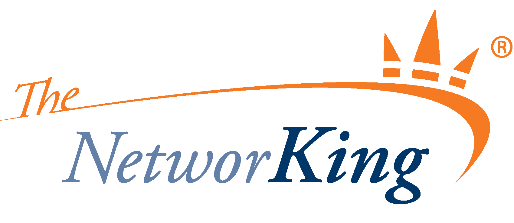 Logo The Network King
